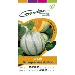 Graines de Melon Superprécoce du roc