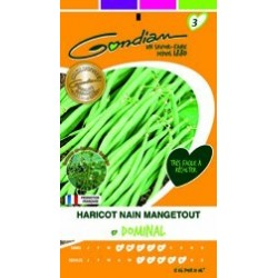 Graines de Haricot Nain Mangetout Dominal