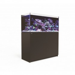 Aquarium Red Sea Reefer 350 Noir (Meuble Inclus)