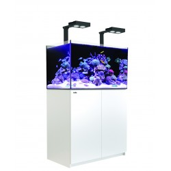 Aquarium Red Sea Reefer Deluxe 250 Blanc (Meuble + 2 Hydra 26 HD + 2 potences Inclus)