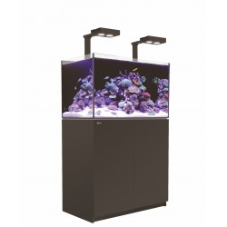 Aquarium Red Sea Reefer Deluxe 250 (Meuble Inclus)