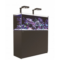 Aquarium Red Sea Reefer Deluxe 350 Noir (2 Hydra 26 HD + 2 potences + Meuble Inclus)