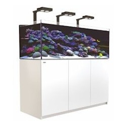Aquarium Red Sea Reefer Deluxe XL 525 Blanc (3 Hydra 26 HD + 3 potences + Meuble Inclus)
