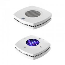 Éclairage LED eau de mer AI Prime HD Blanc (Recto/Verso)
