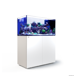 Aquarium Red Sea Reefer Peninsula P500 Blanc (Meuble Inclus)