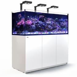 Aquarium Red Sea Reefer Deluxe Blanc XXL 625 (Meuble Inclus)