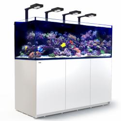 Aquarium Red Sea Reefer Deluxe XXL 750 Blanc (Meuble Inclus)
