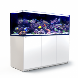 Aquarium Red Sea Reefer XXL 750 Blanc (Meuble Inclus)