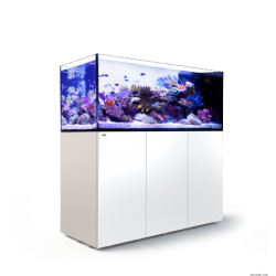 Aquarium Red Sea Reefer Peninsula P650 Blanc (Meuble Inclus)