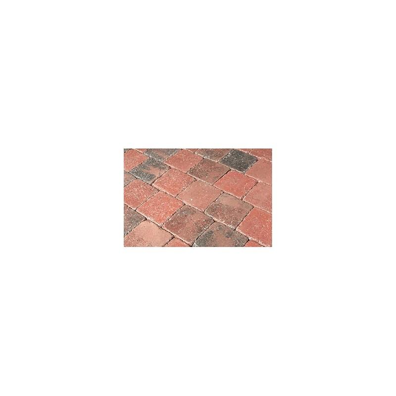 Pavés Arvor Meranti 12,5 x 12,5 x 5 cm