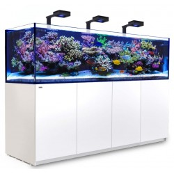 Reefer Deluxe 3XL 900 Blanc ( 3 ReefLED et 3 potences )