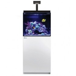Aquarium Red Sea Max E 170 LED