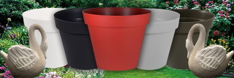 Pot, bac et jardinière